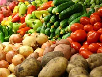 На Кубани намерены производить около 800 тыс. т овощей в год