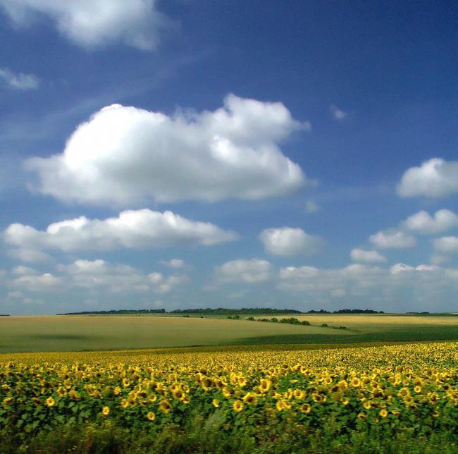 Климат и погода Краснодарского края