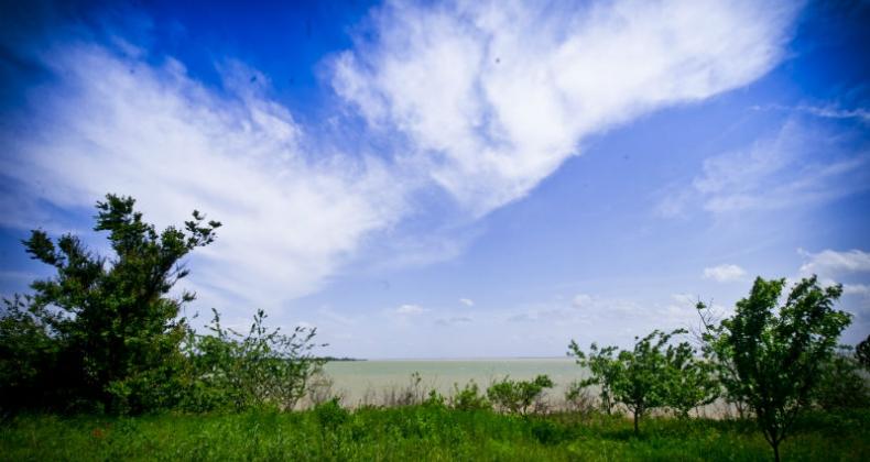 Участки в коттеджном поселке Прибрежный