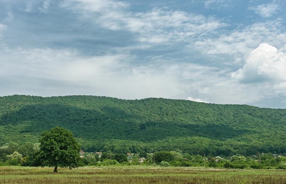 Участки в коттеджном поселке Фанагорийская усадьба